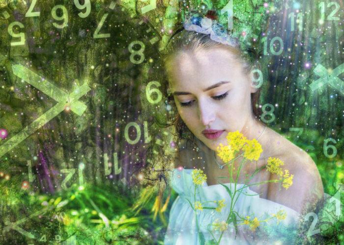 World of numerology